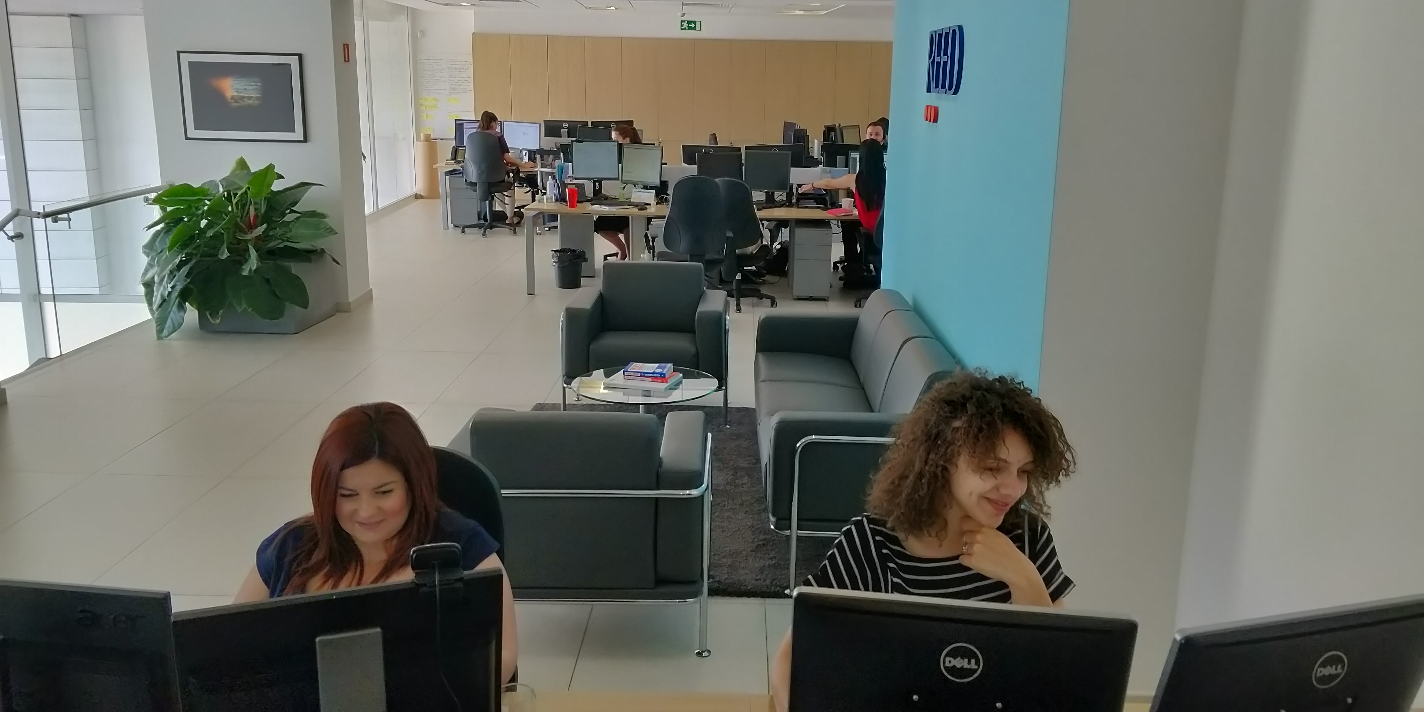 Malta office - reed employees at desks with office behind them