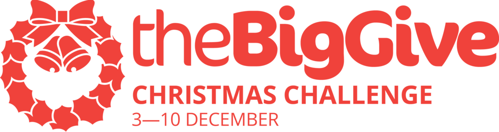 Big Give Christmas Challenge 2019 logo